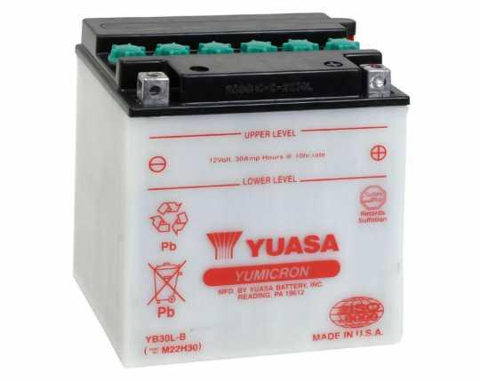 Yuasa Yuasa Batterie YB30L-B  - 28-31596