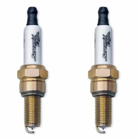 Harley-Davidson Screamin Eagle Performance Spark Plugs  - 31600085