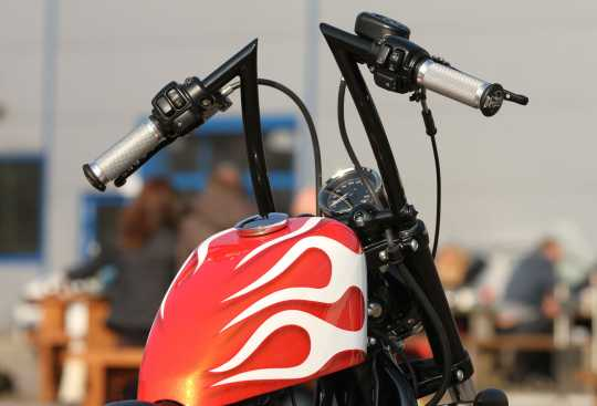 Thunderbike Aufpreis Pulverbeschichtung schwarz  - 50-99-990
