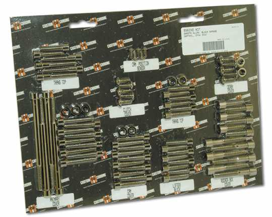 Custom Chrome Primary Cover Bolts smooth black  - 61-2405