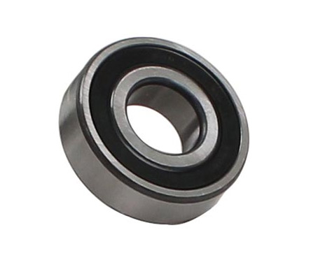Trap Door Ball Bearing