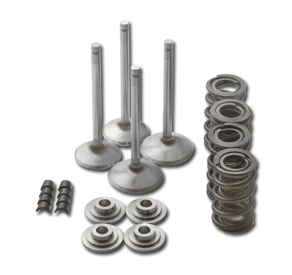 Manley Performance Manley Race Master Valve Train Component Kit  - 99-272