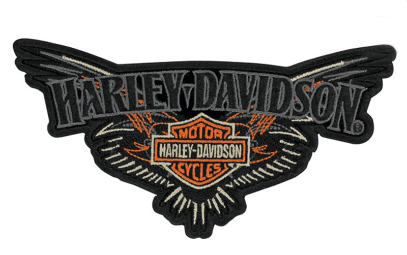 harley davidson aufn her b s pinstriping im thunderbike shop. Black Bedroom Furniture Sets. Home Design Ideas
