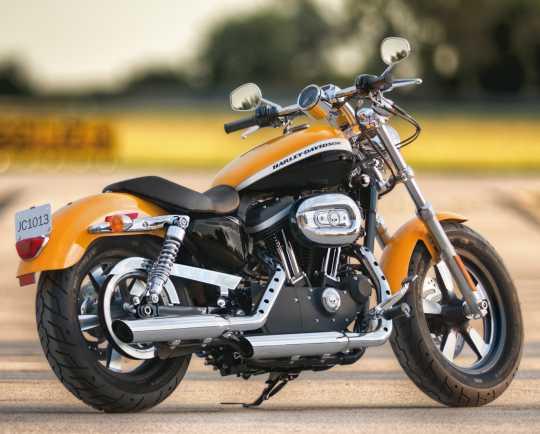 Harley-Davidson Timer Cover Willie G Skull  - 32972-04A