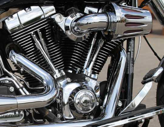 Harley-Davidson Timer Cover Willie G Skull  - 32975-04A
