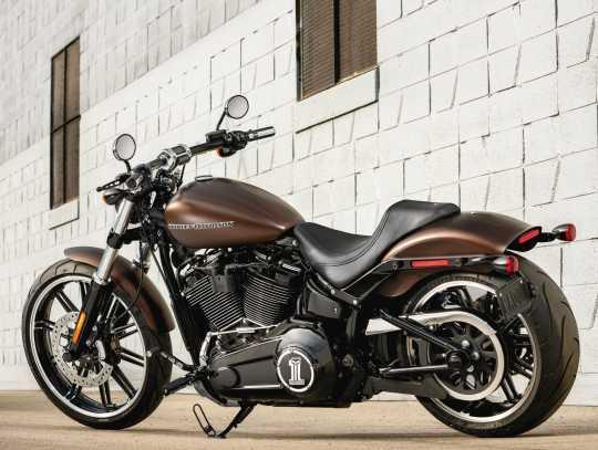 Harley-Davidson Defiance Passenger Footpegs black cut  - 50500832