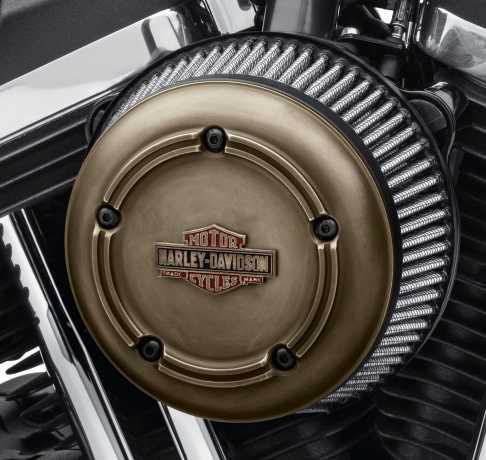 Harley-Davidson Brass Air Cleaner Trim  - 61400339