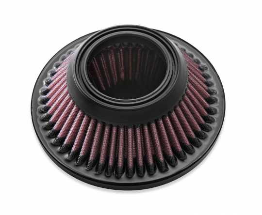 Harley-Davidson Burst Screamin Eagle Aircleaner Kit  - 29000066