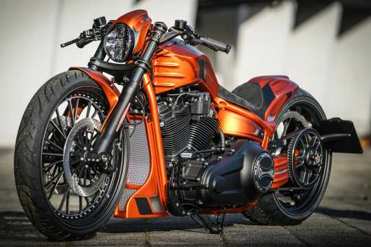Thunderbike Thunderbike Gabel Grand Prix  - 61-74-040V