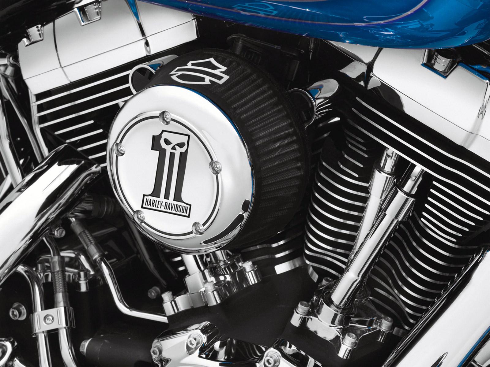 Harley Davidson Sportster  Air Filter