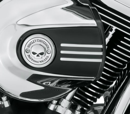 Skull Air Cleaner Cover : Willie g skull air cleaner trim at thunderbike shop